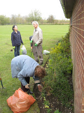 Photo: Wild Flower project Spring working party 21 Apr 2012