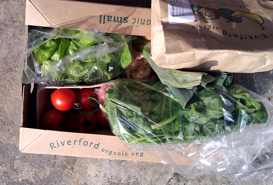 A cardboard box full of vegetables, with spinach, lettuce, tomatoes, a leek, and a paper bag of apples visible
