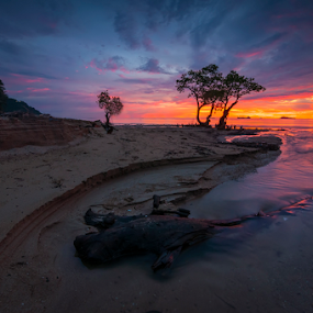 the mangrove by Gian YE - Landscapes Sunsets & Sunrises ( nature, sunset, beach, sunrise, mangrove )