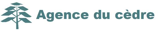 Logo de AGENCE DU CEDRE 78590