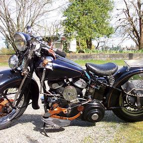 by Darrin McNett - Transportation Motorcycles (  )