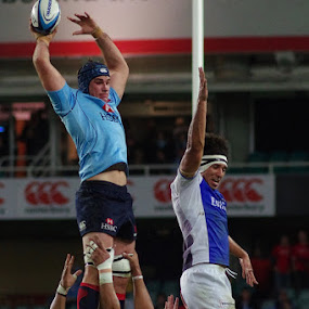 Waratahs vs Western Force 01 by Graham MacDougall - Sports & Fitness Rugby ( rugby union waratahs force sfs )