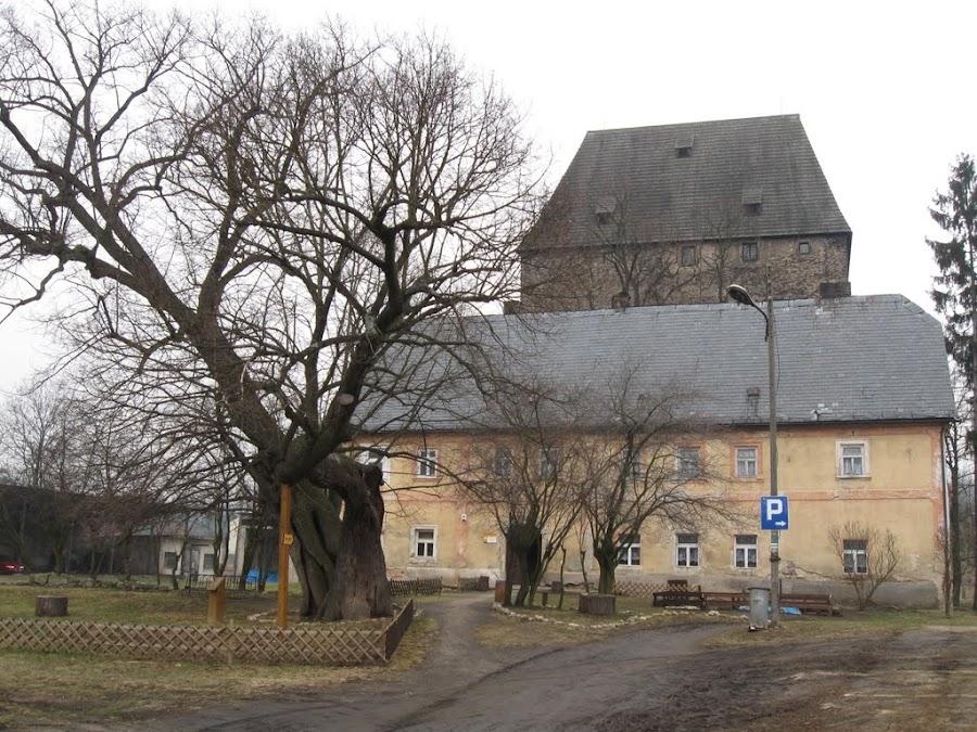 siedlęcin - widok na wieżę rycerską