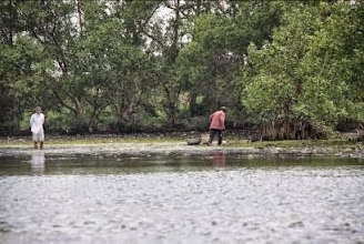 Photo: River life in the Mekong delta