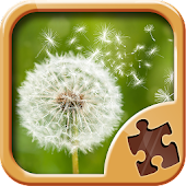 Magic Puzzle Games