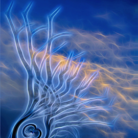 Tree Spirit by Kittie Groenewald - Digital Art Abstract ( blue sky, abstract art, tree )