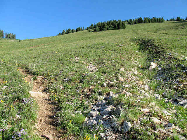 The start of the switchbacks up the mountain