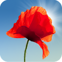 Poppy Field Live Wallpaper icon