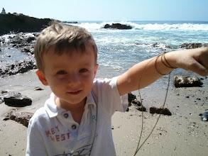 Photo: Finn's Seaweed Bracelet