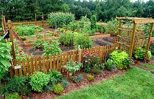 Gardening Resources Ekar Farm