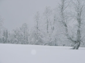 Photo: Schachten Idyll im Nebel
