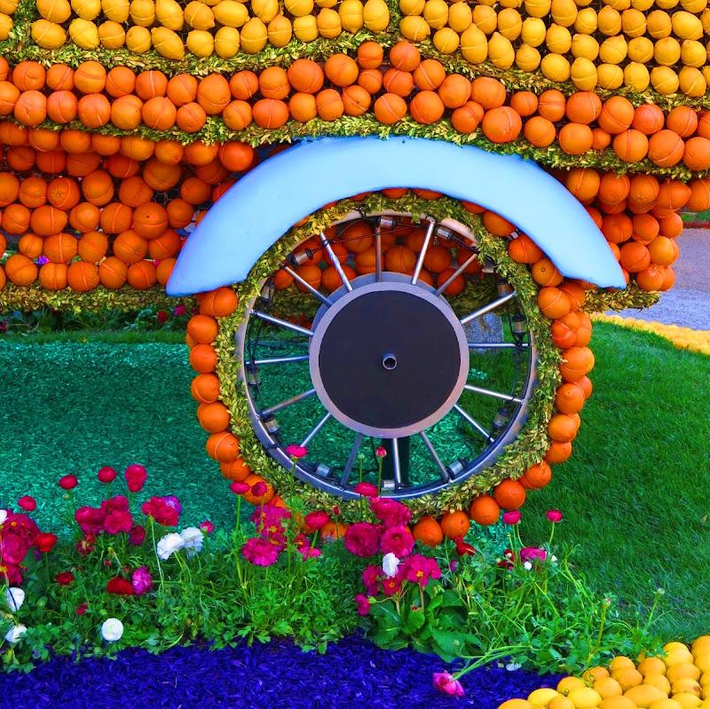 la ruota dei colori di malte