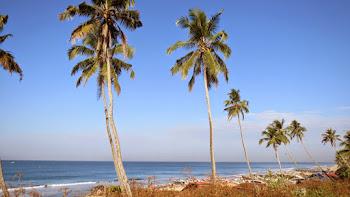 Aaliyirakkam Beach, Varakala