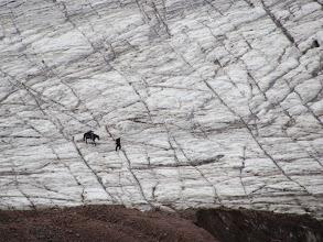 Photo: Ortsveri Gletscher