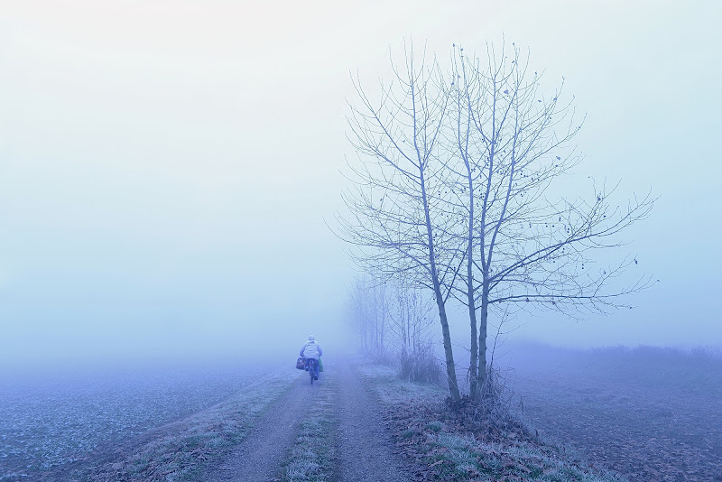 Mattina d'inverno di Dariagufo