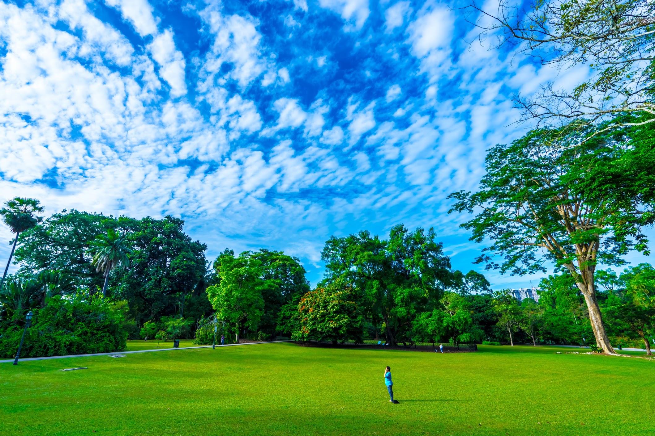 シンガポール植物園(ボタニック・ガーデン)2
