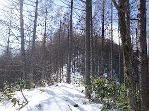 雪の尾根道に