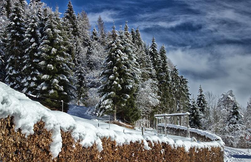 In montagna, sole e neve .. come si deve di galubio52