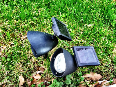 Solar lights grass photo