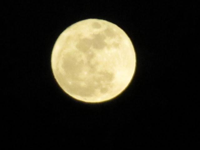 La luna - Página 3 IMG_0323