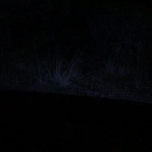タントカスタム LA600S SAⅡ のカスタム事例画像 にぃ【TSP】さんの2019年03月21日17:36の投稿
