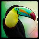 Animal Sound for Kids icon
