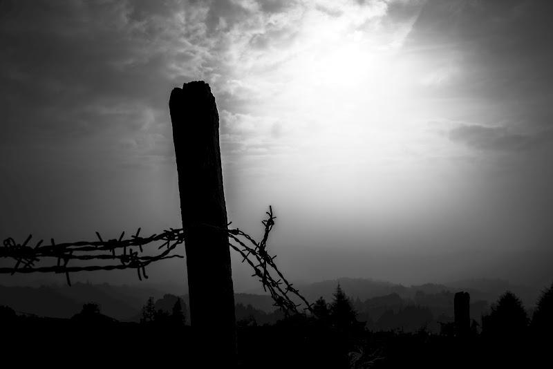Silhouette drammatica... di Nicola Rossignoli photo2017