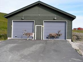 Photo: to ich garaże?;)