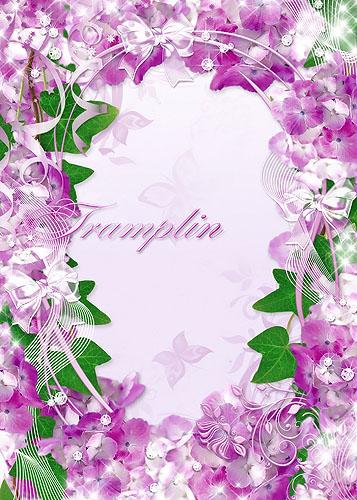 Рамка для ваших фото-  Сиреневые цветочки