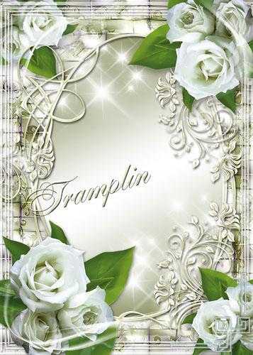 Рамка цветочная для фото  - Белые розы