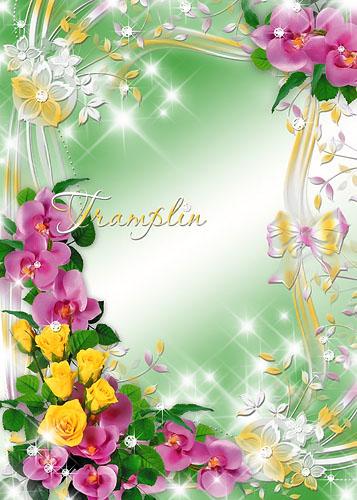 Цветочную Рамку для Photoshop – Орхидеи и розы