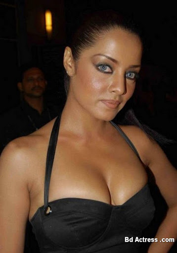 Bollywood Actress Celina Jaitley Photo-06
