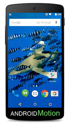 玩個人化App|Coralline Barrier Background免費|APP試玩