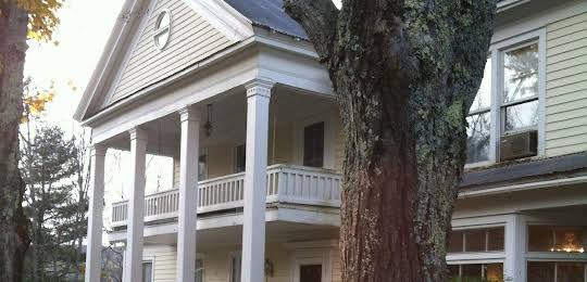 The Willow Tree Inn