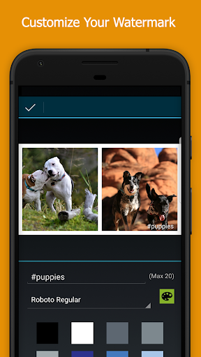 Image of PicPlayPost - Photo & Video Collage Maker Editor 3.11.0_g_g 2