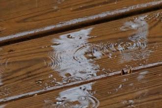 Photo: Day 21-Raindrops And Ripples
