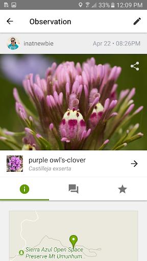 iNaturalist screenshot 1