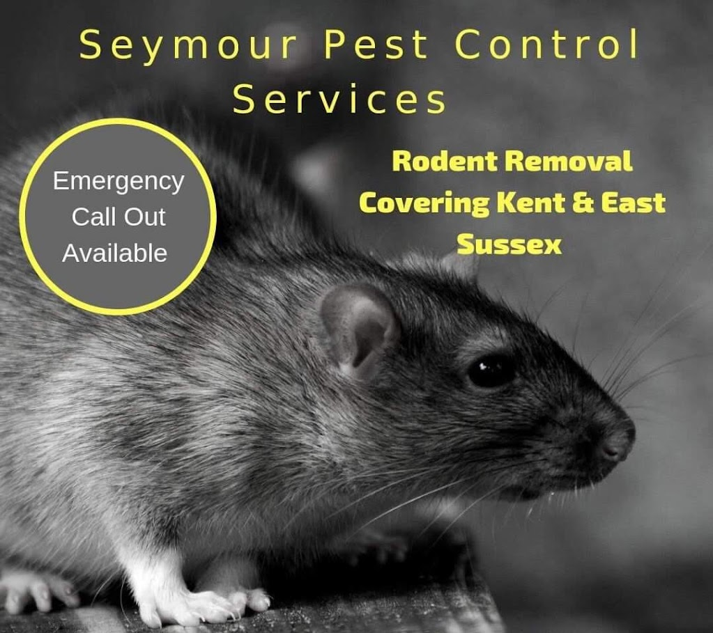 Seymour Pest Control Services Tenterden