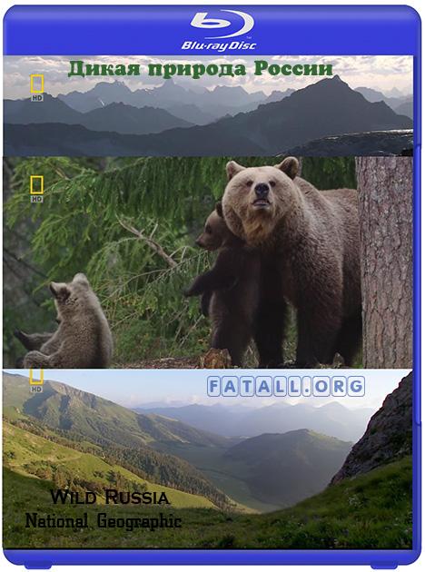 Дикая природа России / Wild Russia (2009) HDTVRip + 720p