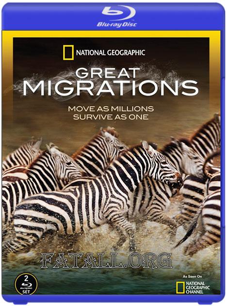 Великие миграции / Great Migrations [6 из 6 серий] (2010) BDRip 720p