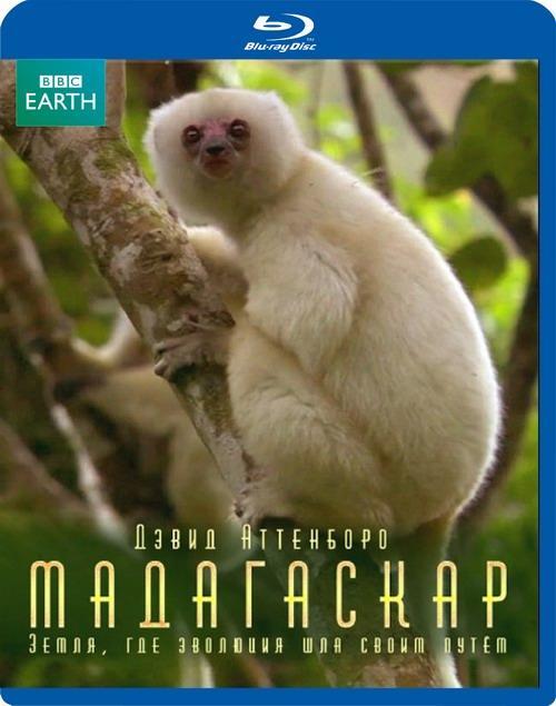 Мадагаскар: Земля, где эволюция шла своим путём (2011) BDRip 720p