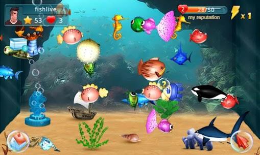Fish Live 1