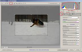 Окно программы Camera RAW