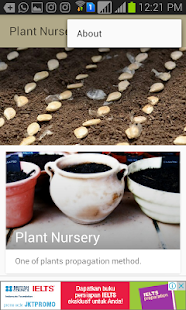 Plant Nursery - náhled