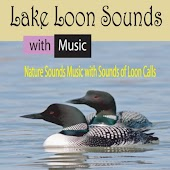 Lake Loon Sounds with Music: Nature Sounds Music with Sounds of Loon Calls