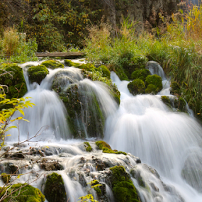 Roughlock Falls by J.c. Phelps - Landscapes Waterscapes ( water, nature, waterscape, waterfall, forest )