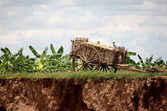 Photo: Year 2 Day 34 -  Cart on the Bank of the Mekong