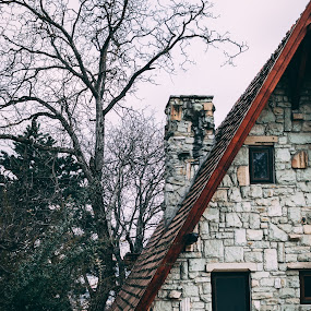 home by Paul Voie - Buildings & Architecture Homes ( cluj-napoca, tree, winter, portait, house )