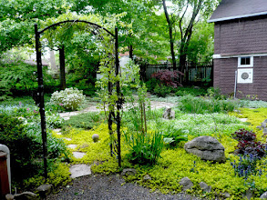 Photo: Interesting ironwork makes a great entrance for this richly planted landscape.