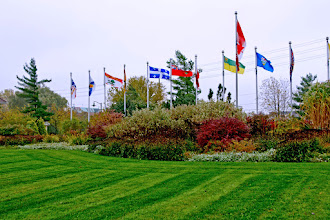Photo: We designed and built this garden at Chris Hadfield Park in Milton. It tolerates the local clay soil and drought.